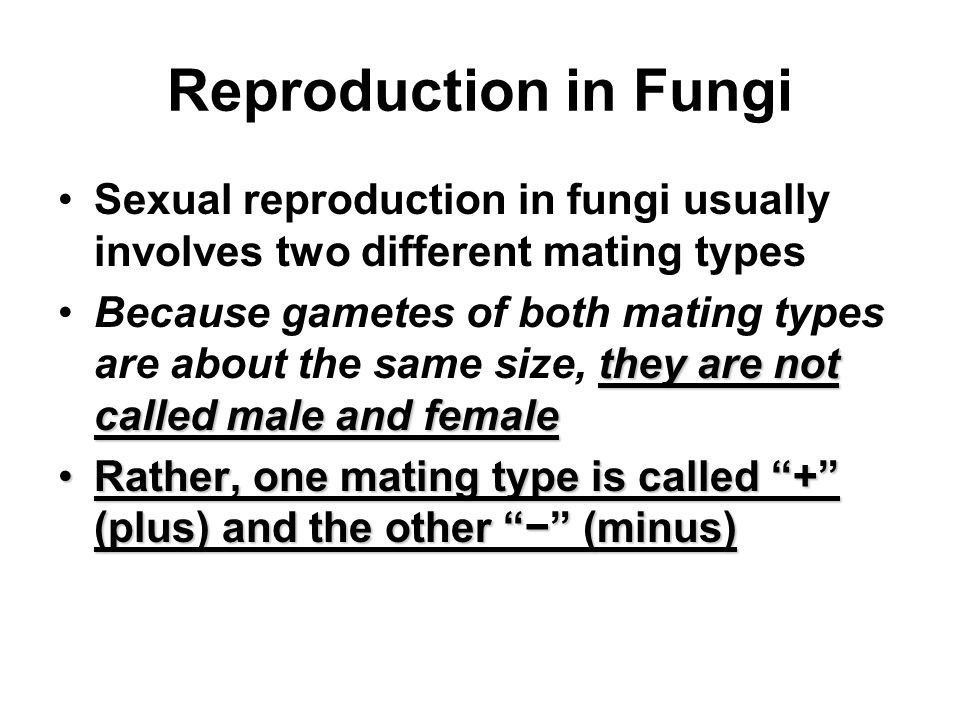 Reproduction in Fungi Sexual reproduction in fungi usually involves two different mating types.