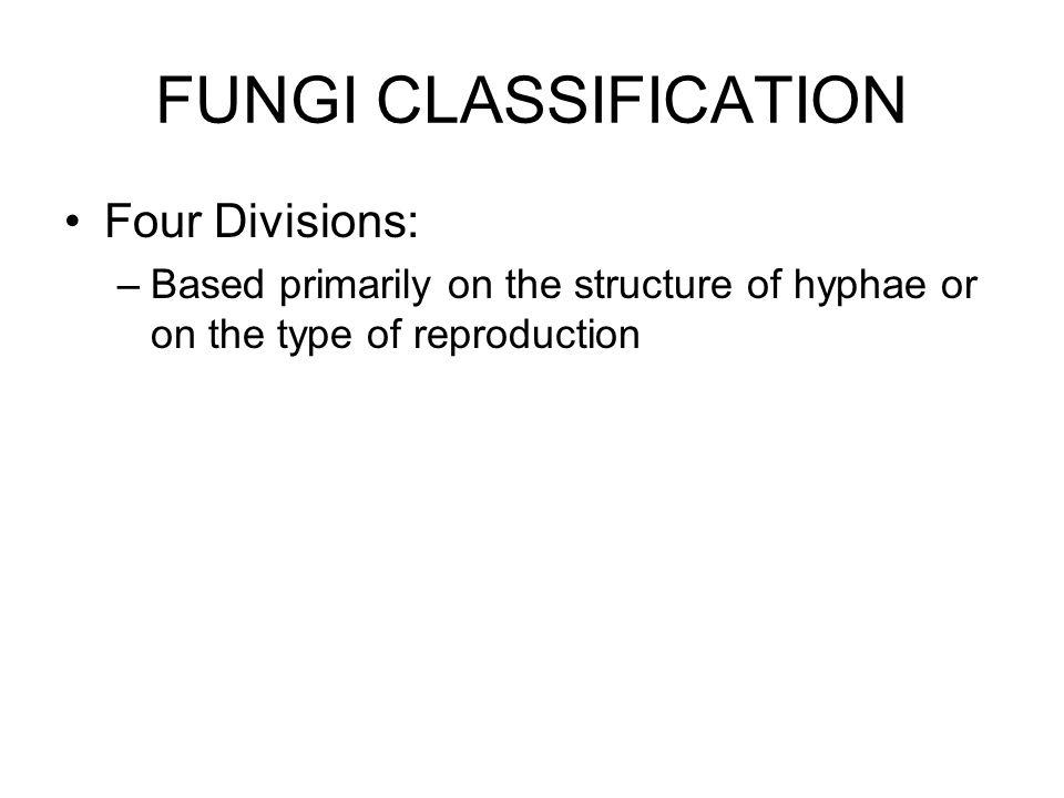 FUNGI CLASSIFICATION Four Divisions: