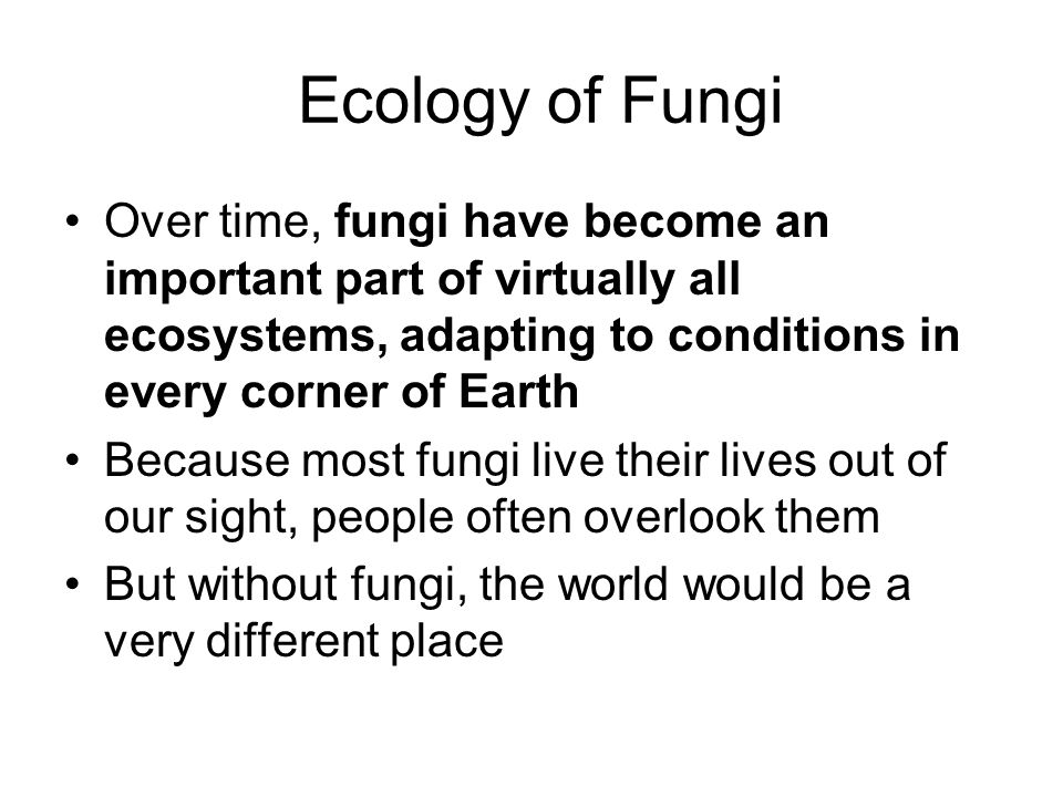 Ecology of Fungi Over time, fungi have become an important part of virtually all ecosystems, adapting to conditions in every corner of Earth.