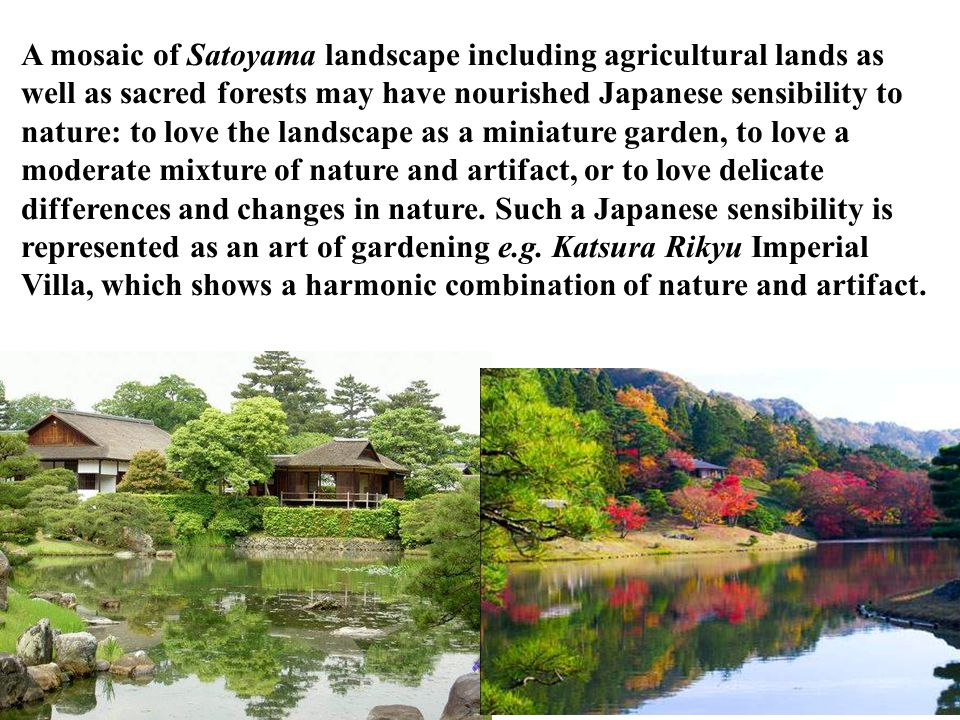 A mosaic of Satoyama landscape including agricultural lands as well as sacred forests may have nourished Japanese sensibility to nature: to love the landscape as a miniature garden, to love a moderate mixture of nature and artifact, or to love delicate differences and changes in nature.