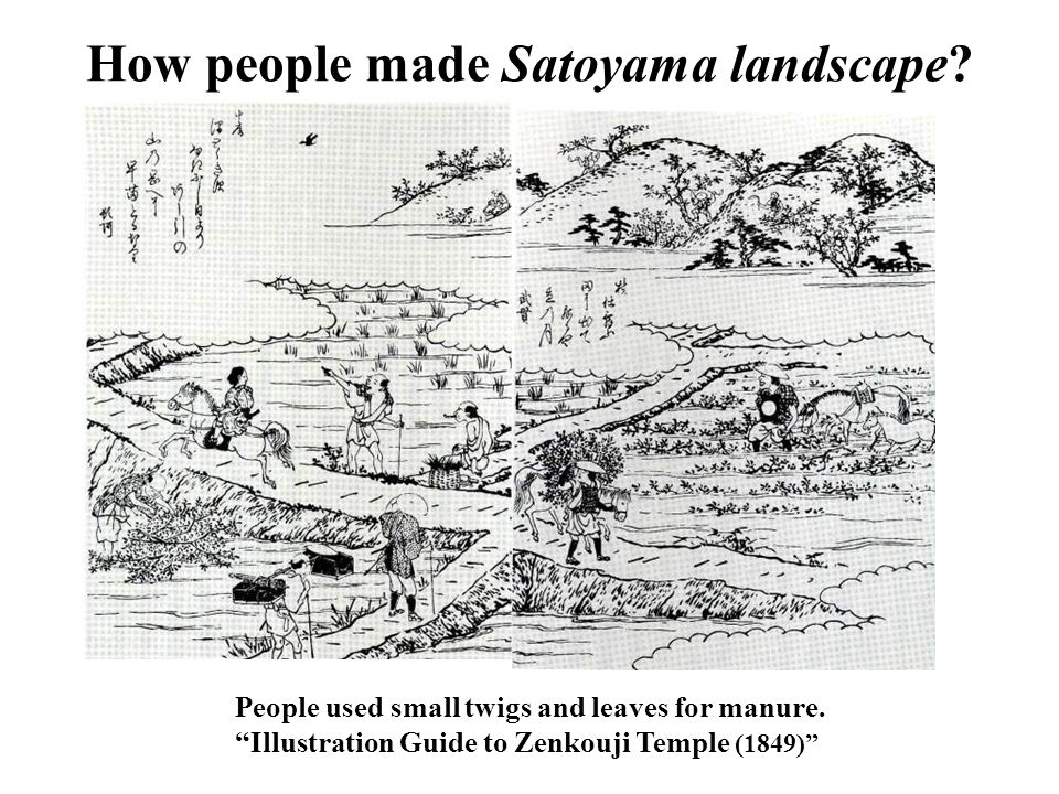 How people made Satoyama landscape