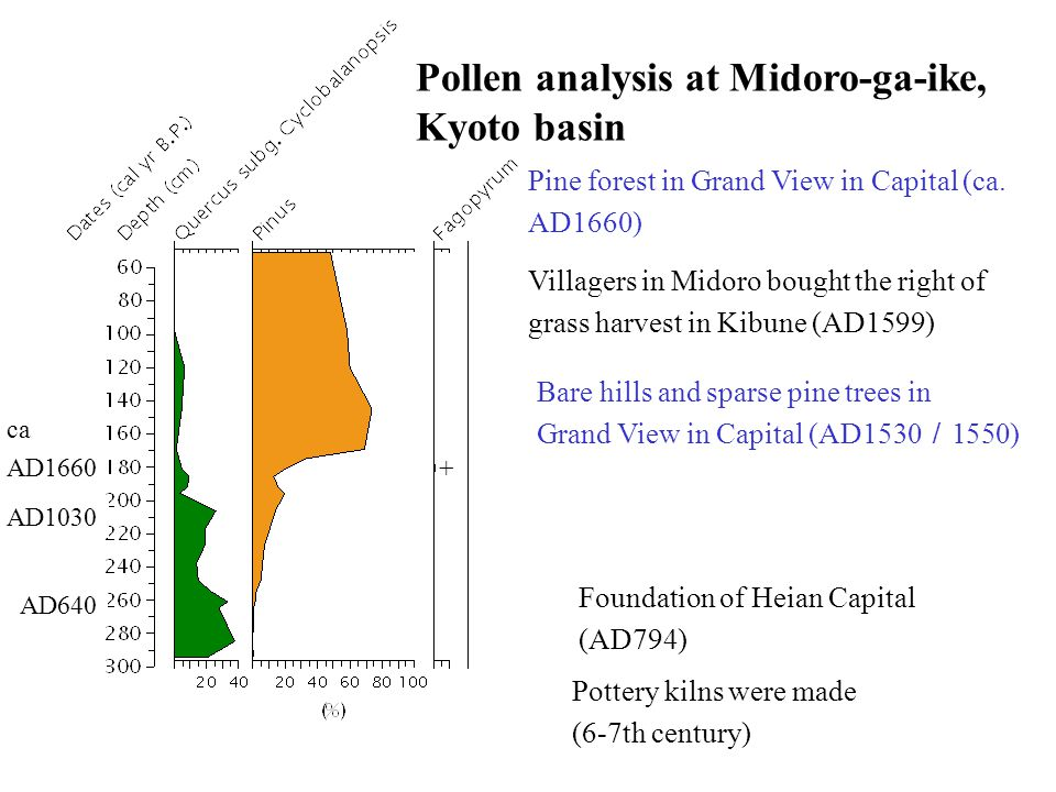 Pollen analysis at Midoro-ga-ike, Kyoto basin