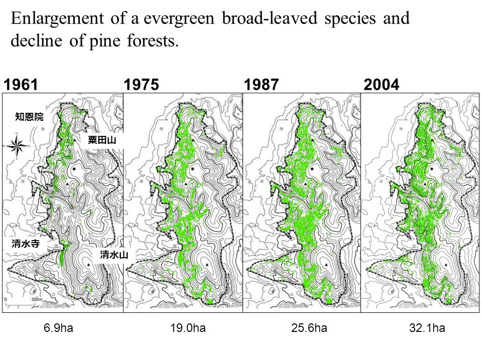 Enlargement of a evergreen broad-leaved species and decline of pine forests.