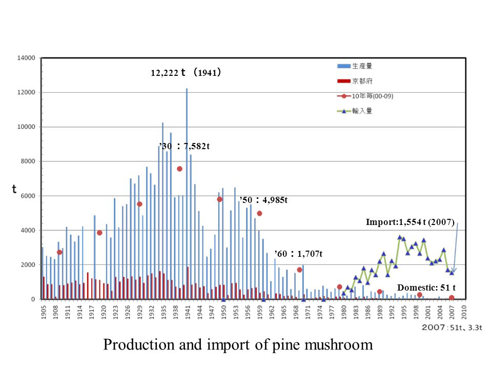 Production and import of pine mushroom