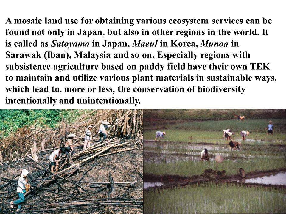 A mosaic land use for obtaining various ecosystem services can be found not only in Japan, but also in other regions in the world.
