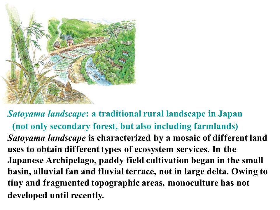 Satoyama landscape: a traditional rural landscape in Japan