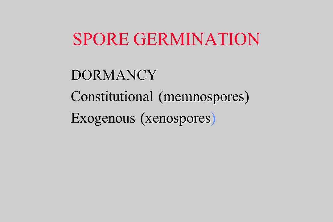 SPORE GERMINATION DORMANCY Constitutional (memnospores)