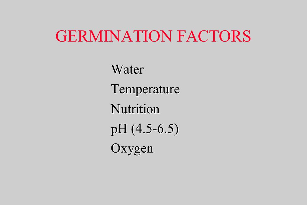 GERMINATION FACTORS Water Temperature Nutrition pH (4.5-6.5) Oxygen