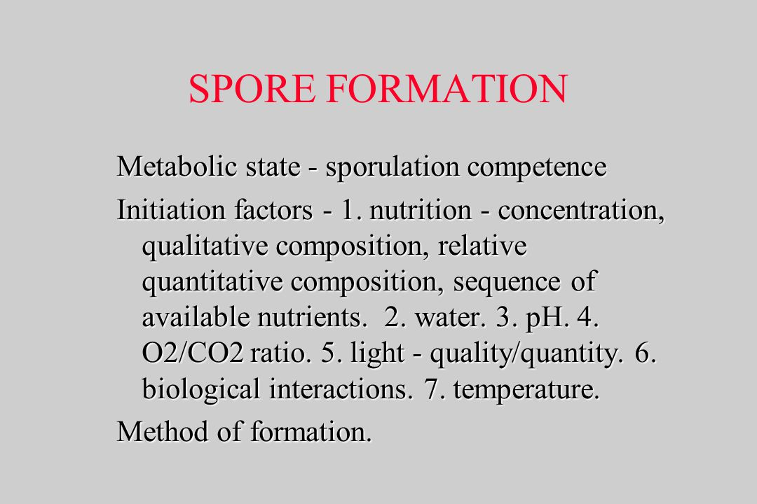 SPORE FORMATION Metabolic state - sporulation competence