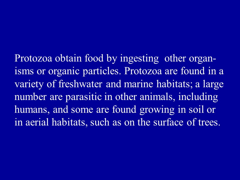 Protozoa obtain food by ingesting other organ-isms or organic particles.
