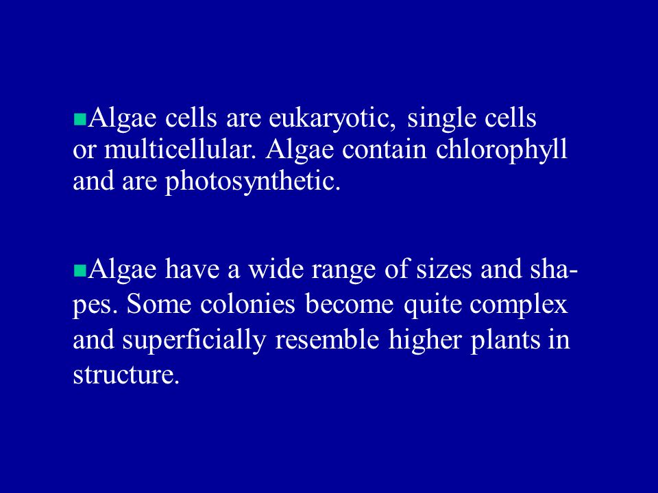 Algae cells are eukaryotic, single cells or multicellular