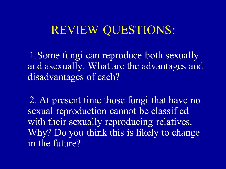 REVIEW QUESTIONS: 1.Some fungi can reproduce both sexually and asexually. What are the advantages and disadvantages of each