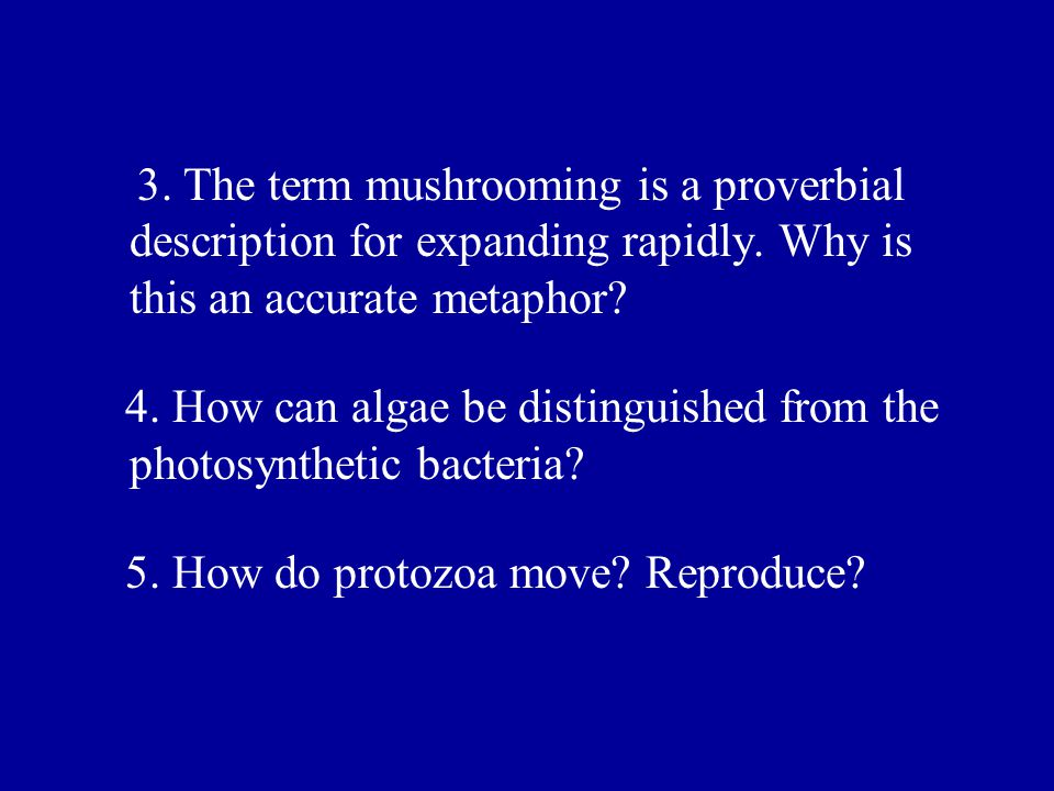 3. The term mushrooming is a proverbial description for expanding rapidly. Why is this an accurate metaphor