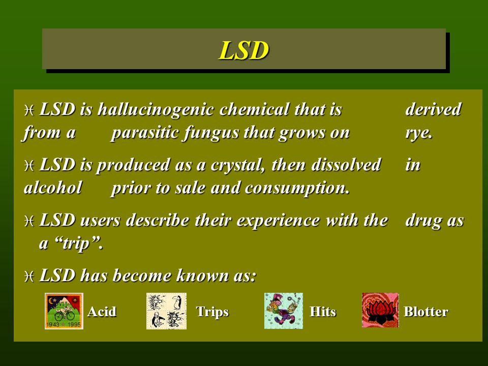 LSD LSD is hallucinogenic chemical that is derived from a parasitic fungus that grows on rye.