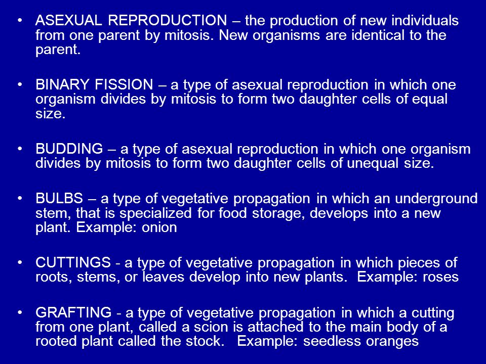 ASEXUAL REPRODUCTION – the production of new individuals from one parent by mitosis. New organisms are identical to the parent.