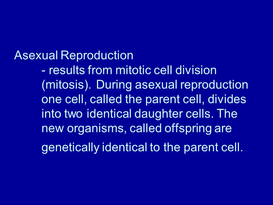 Asexual Reproduction. - results from mitotic cell division. (mitosis)