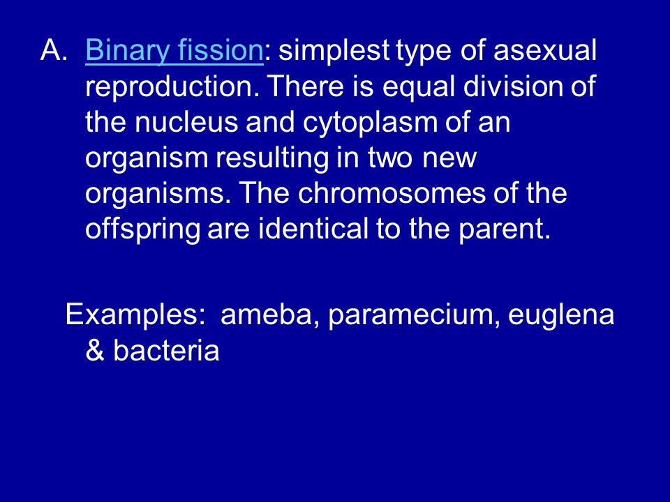 Binary fission: simplest type of asexual reproduction