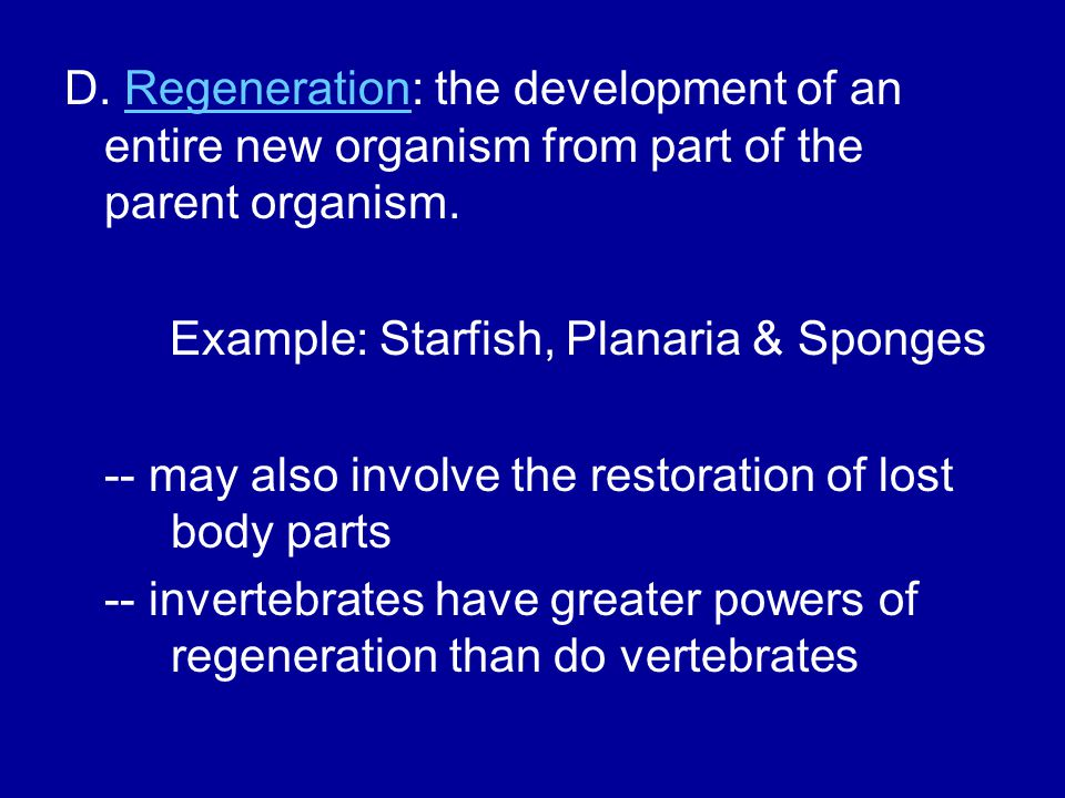 D. Regeneration: the development of an entire new organism from part of the parent organism.