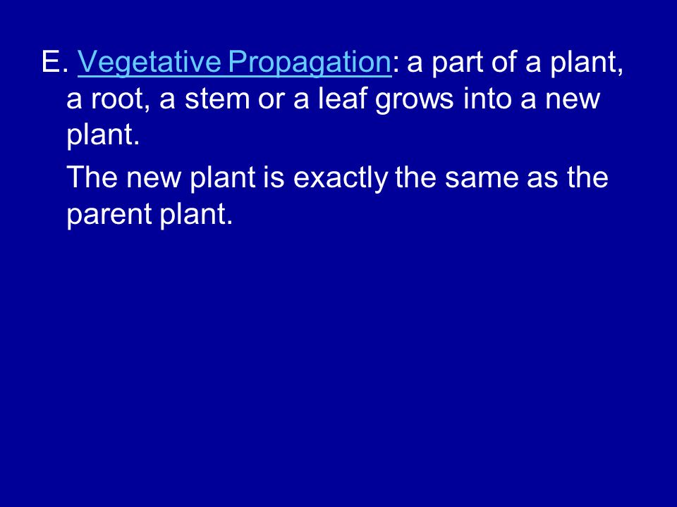 E. Vegetative Propagation: a part of a plant, a root, a stem or a leaf grows into a new plant.