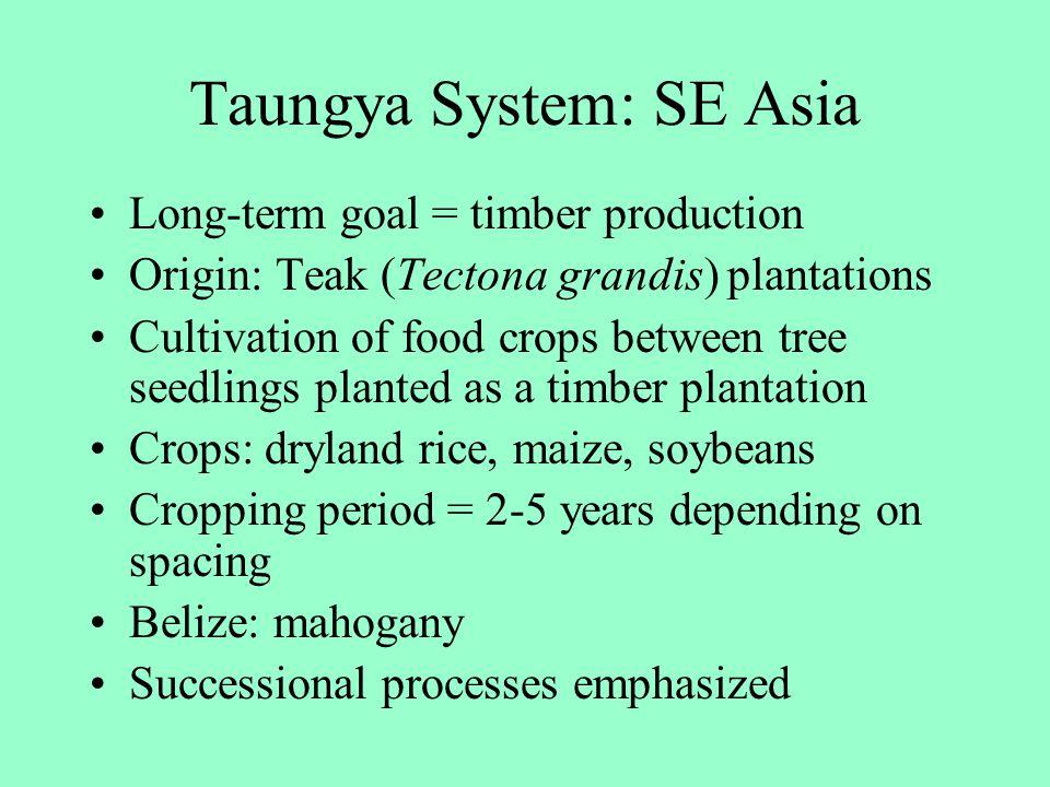 Taungya System: SE Asia