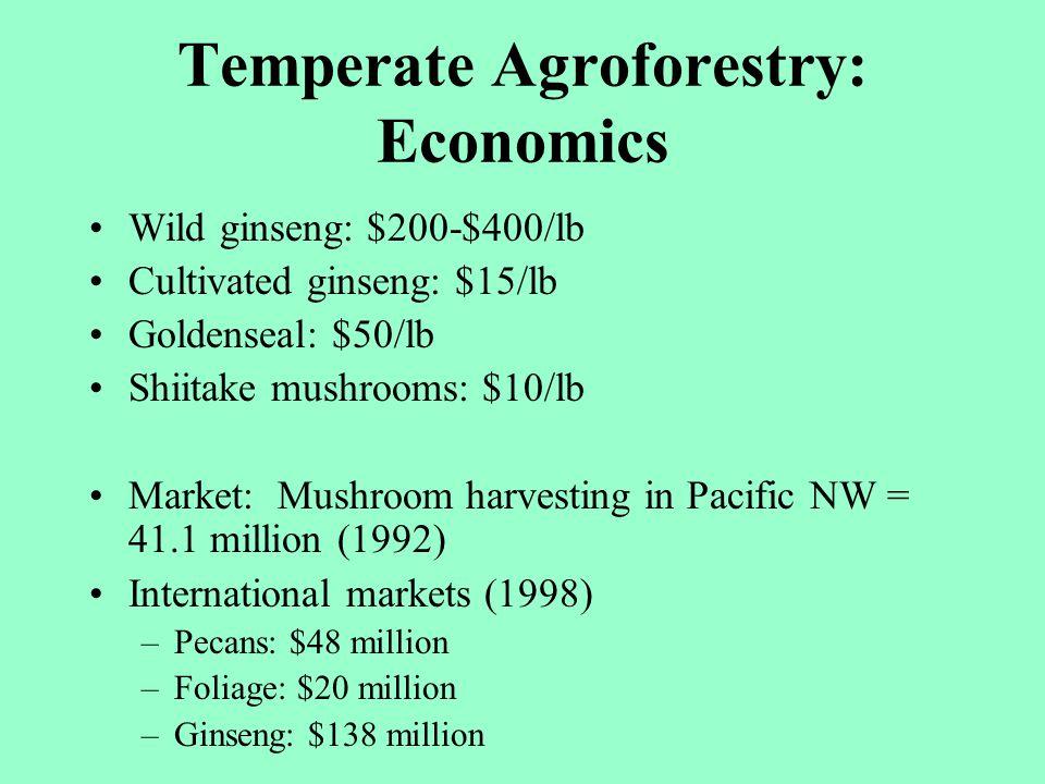 Temperate Agroforestry: Economics