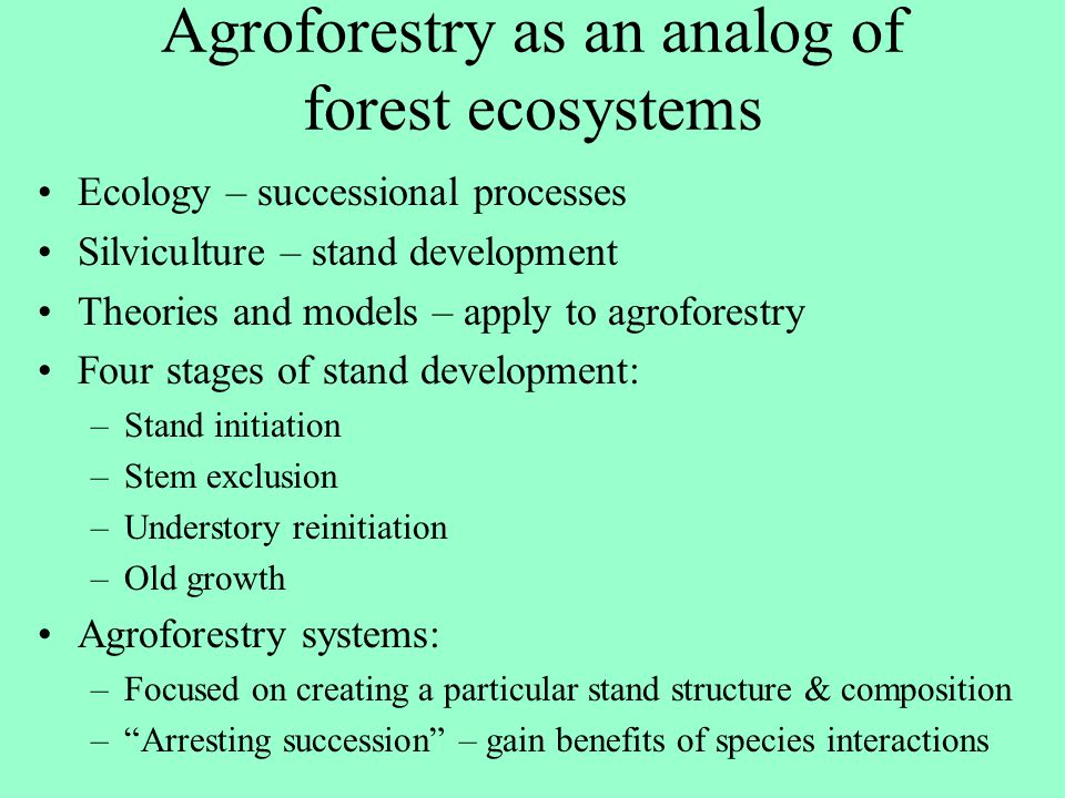 Agroforestry as an analog of forest ecosystems
