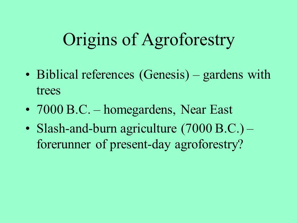 Origins of Agroforestry
