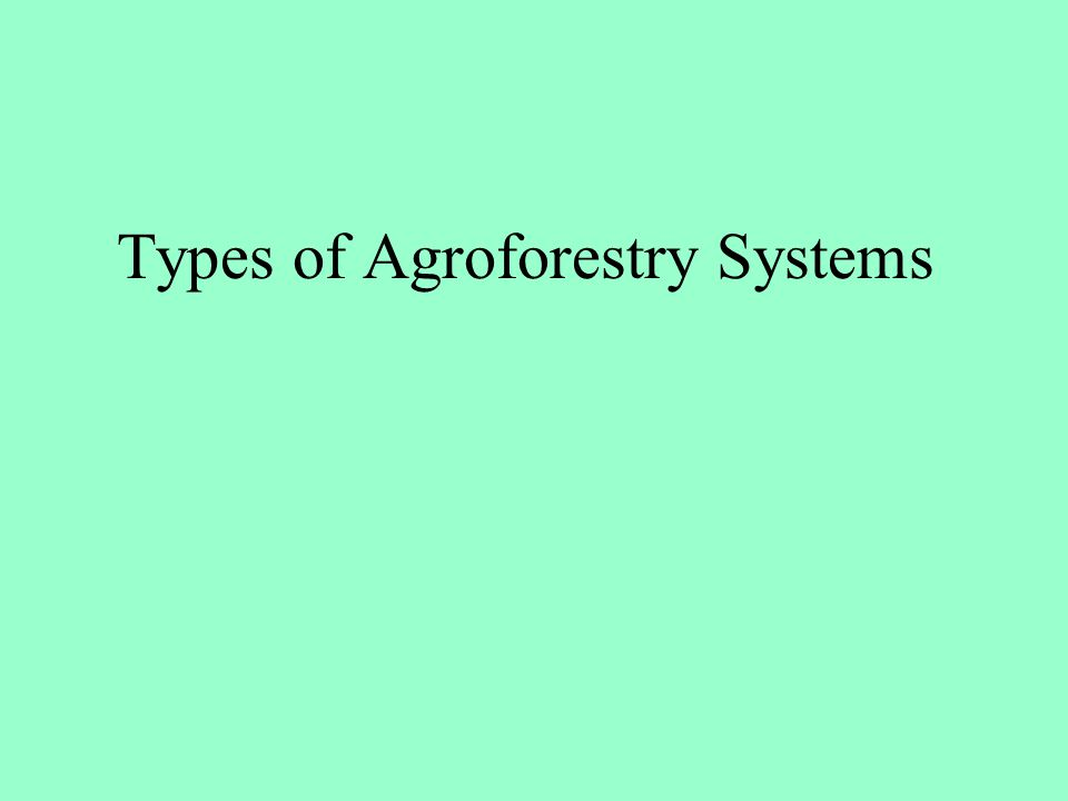 Types of Agroforestry Systems