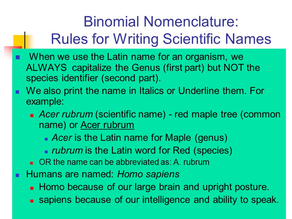 Binomial Nomenclature: Rules for Writing Scientific Names