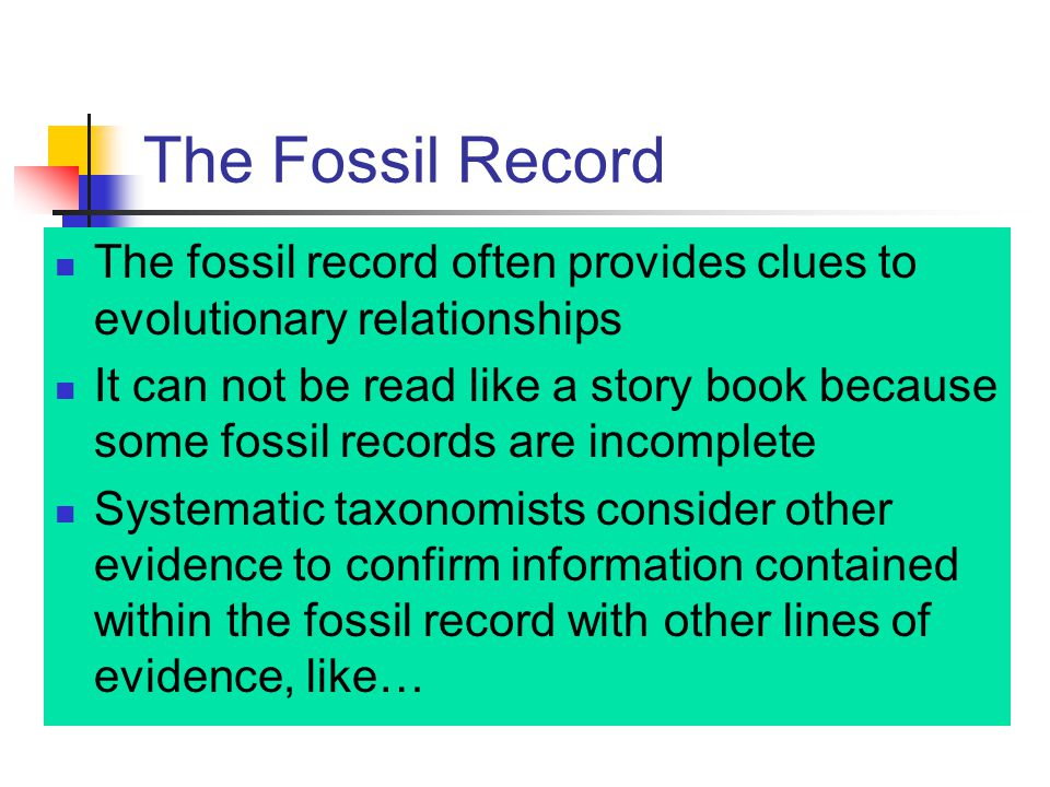 The Fossil Record The fossil record often provides clues to evolutionary relationships.