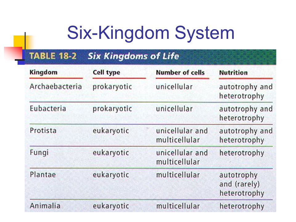 Six-Kingdom System