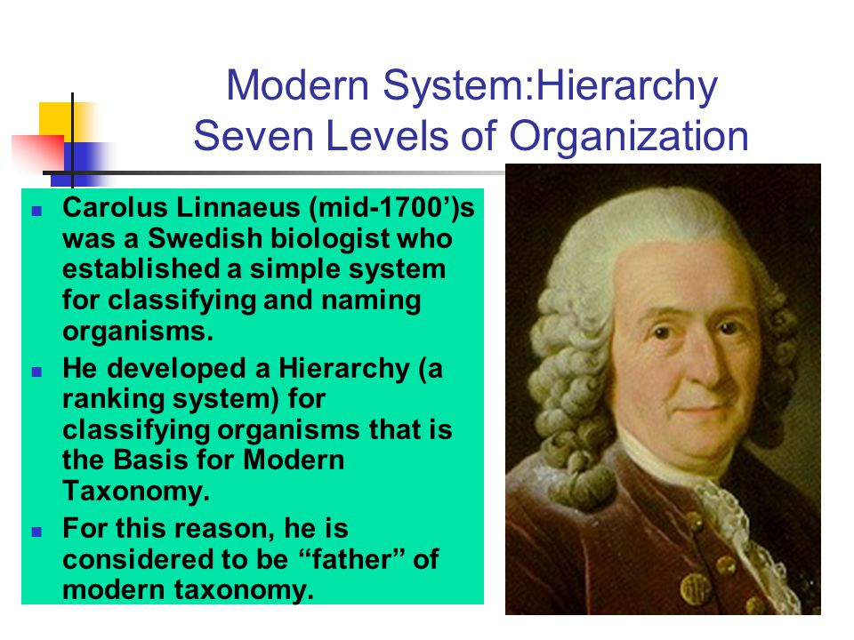 Modern System:Hierarchy Seven Levels of Organization