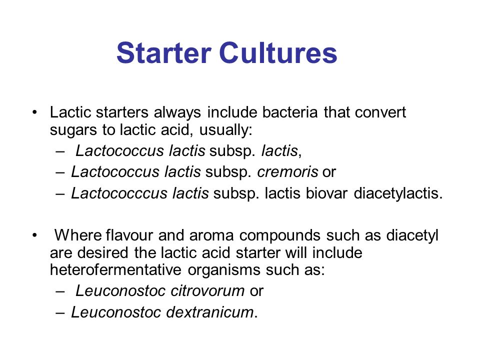 Starter Cultures Lactic starters always include bacteria that convert sugars to lactic acid, usually: