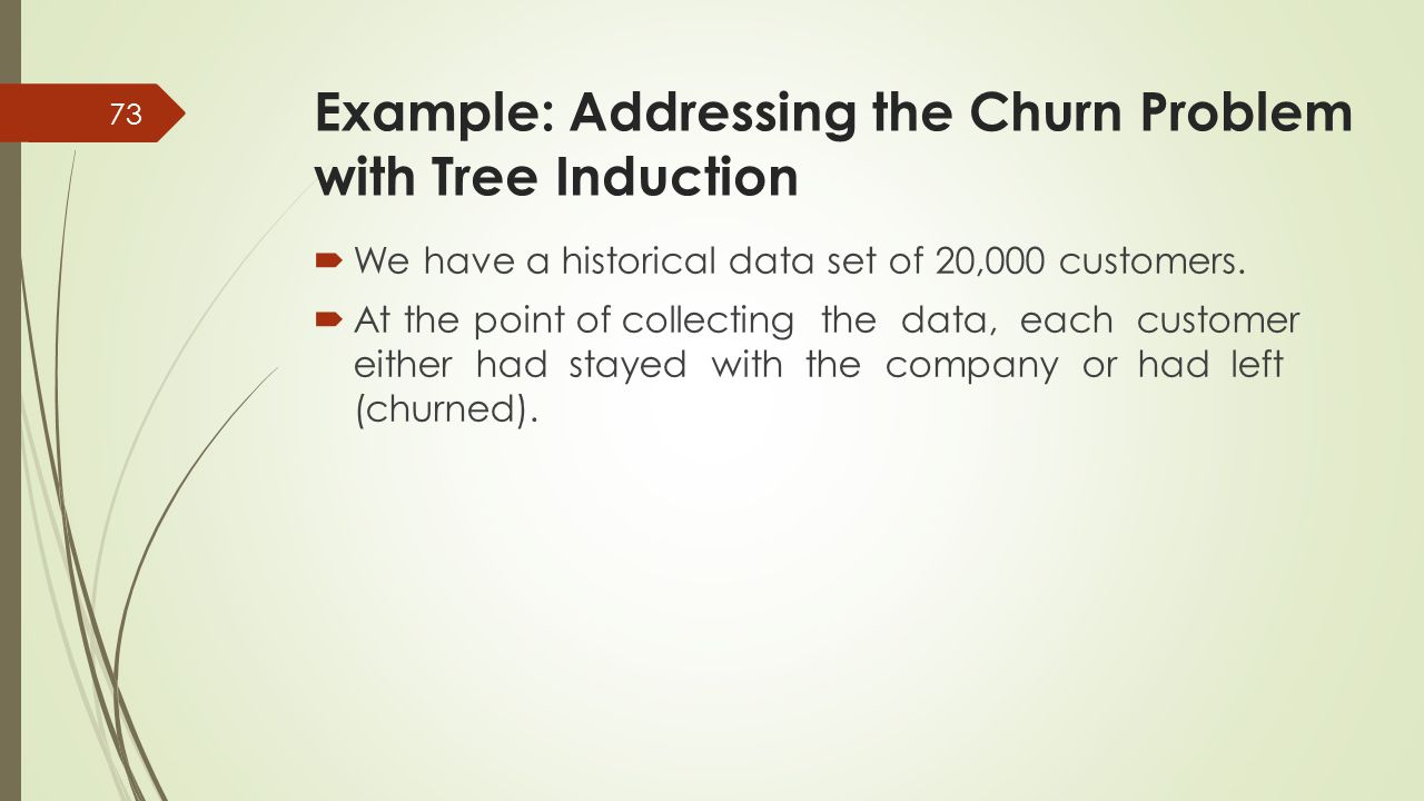 Example: Addressing the Churn Problem with Tree Induction
