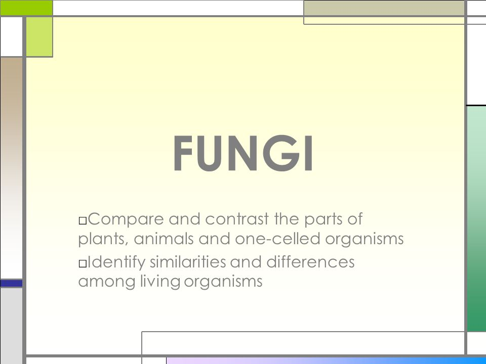 FUNGI Compare and contrast the parts of plants, animals and one-celled organisms.