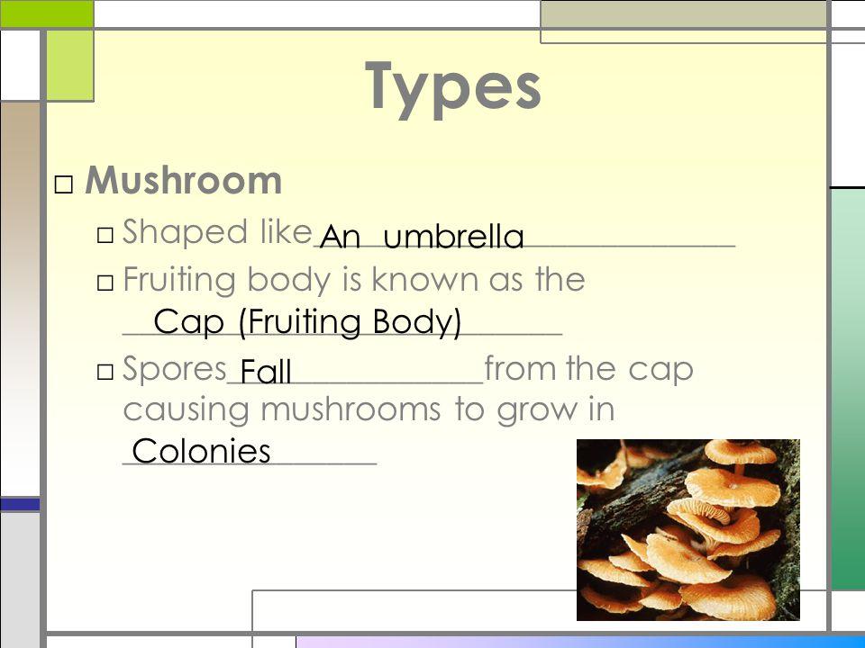 Types Mushroom Shaped like_________________________