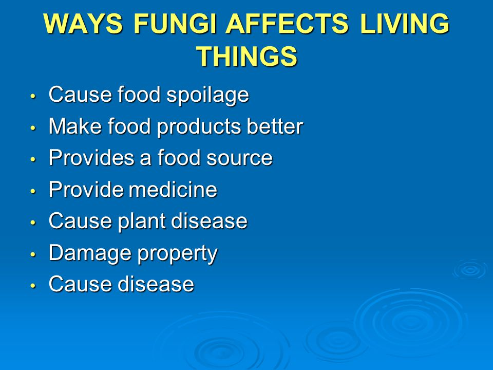 WAYS FUNGI AFFECTS LIVING THINGS