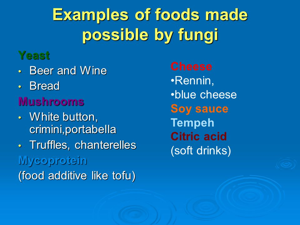 Examples of foods made possible by fungi