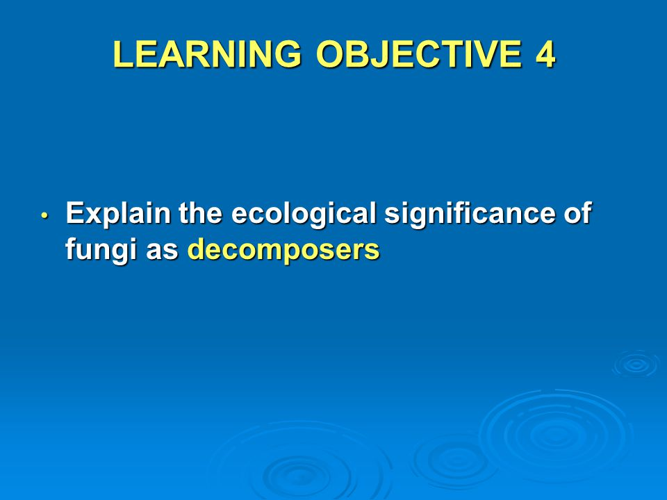 LEARNING OBJECTIVE 4 Explain the ecological significance of fungi as decomposers