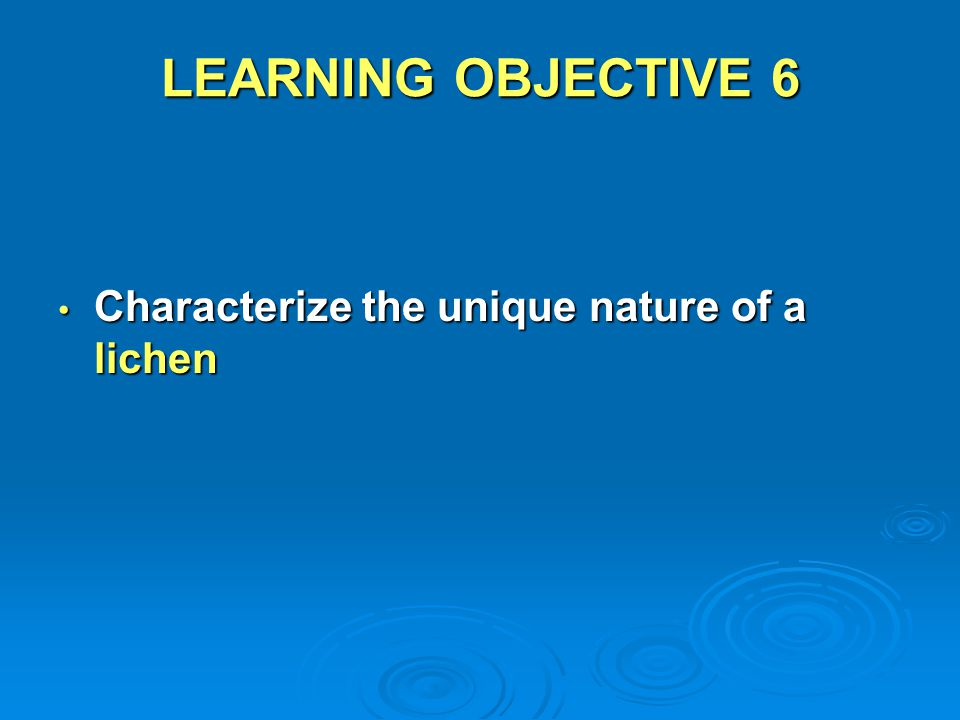 LEARNING OBJECTIVE 6 Characterize the unique nature of a lichen