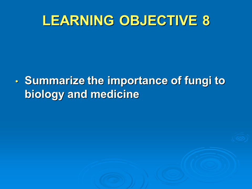 LEARNING OBJECTIVE 8 Summarize the importance of fungi to biology and medicine
