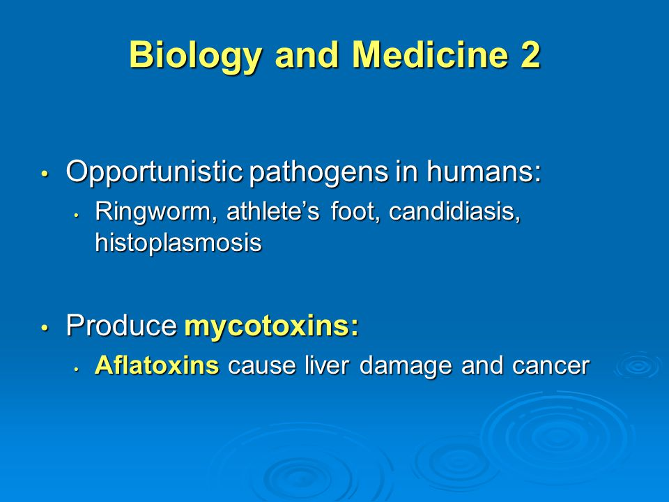 Biology and Medicine 2 Opportunistic pathogens in humans:
