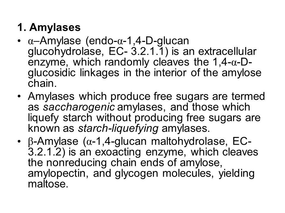 1. Amylases