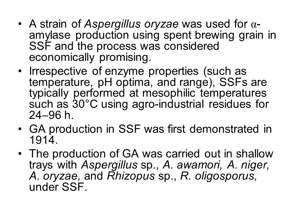 A strain of Aspergillus oryzae was used for α-amylase production using spent brewing grain in SSF and the process was considered economically promising.