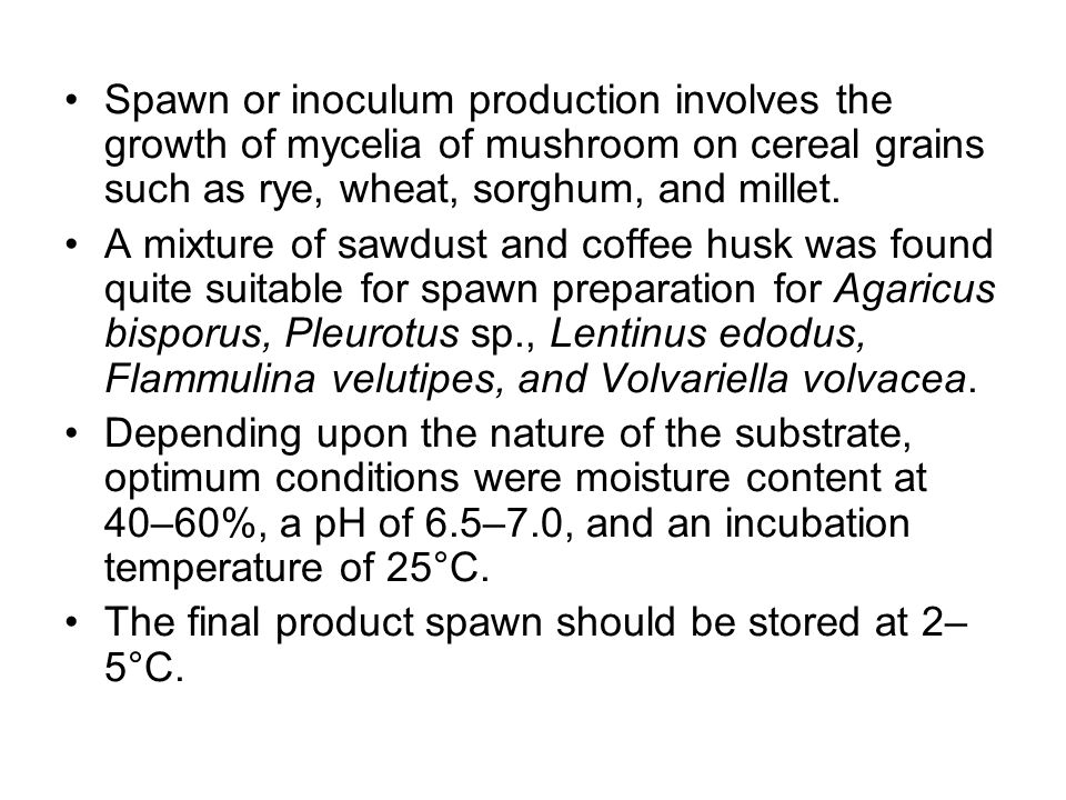 Spawn or inoculum production involves the growth of mycelia of mushroom on cereal grains such as rye, wheat, sorghum, and millet.