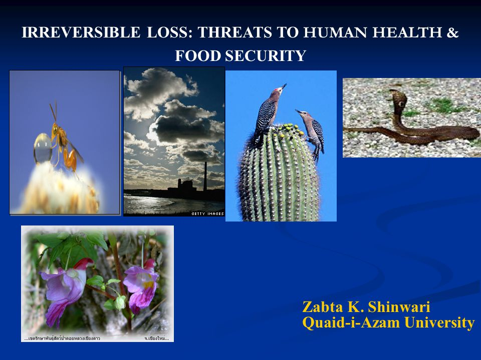 IRREVERSIBLE LOSS: THREATS TO HUMAN HEALTH &