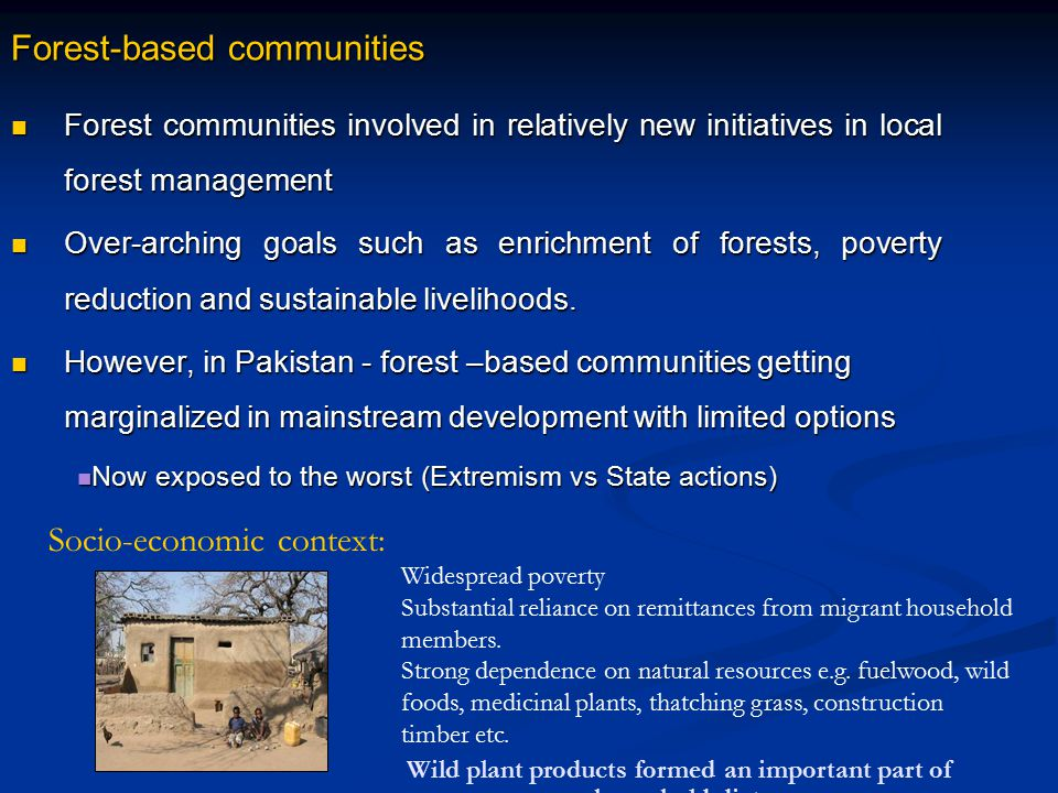 Forest-based communities