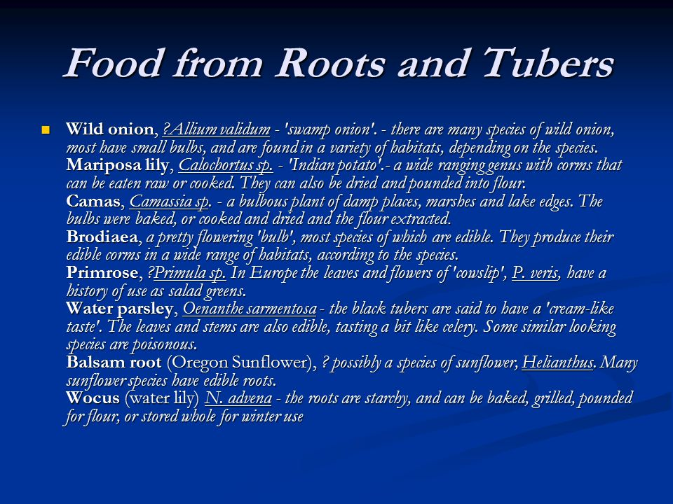 Food from Roots and Tubers