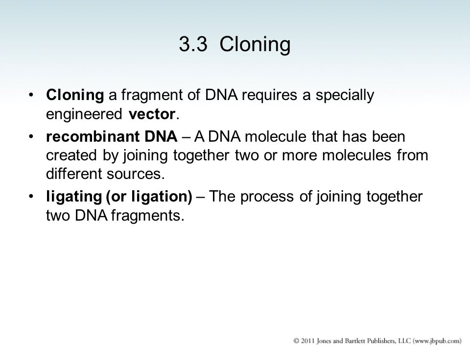 3.3 Cloning Cloning a fragment of DNA requires a specially engineered vector.