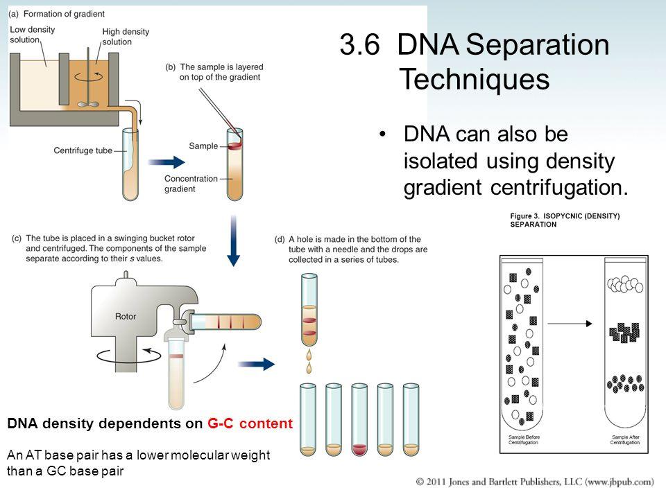 3.6 DNA Separation Techniques